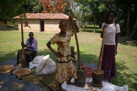 Kyambura Coffee