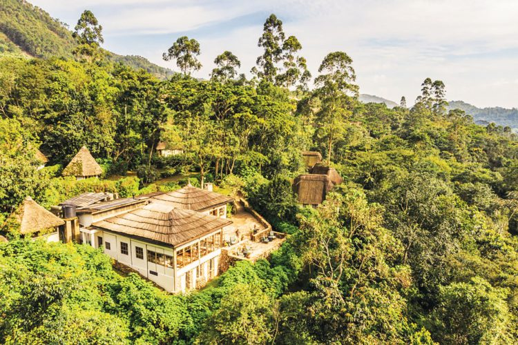Volcanoes Safaris Rwanda Countryside