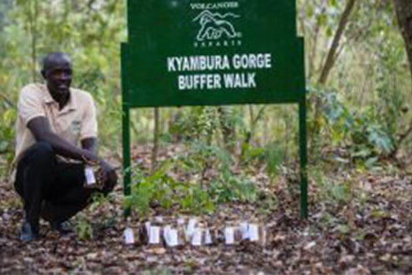 kyambura eco gorge