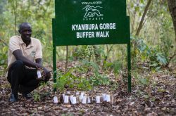 Volcanoes Safaris Kyambura Gorge Buffer Walk