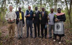 Volcanoes Safaris Planting Trees