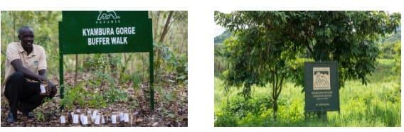 Wetland-and-Buffer.jpg